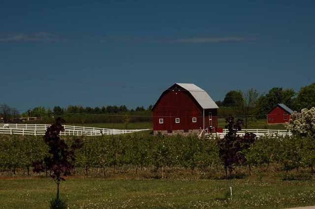 Farm on Old Mission Peninsula